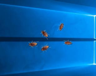 Cockroach on Desktop main screen