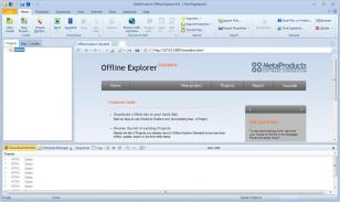 Offline Explorer main screen