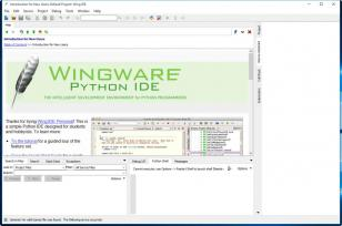 Wing IDE Personal main screen